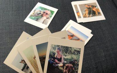 Leuke fotoprints van je hond